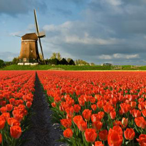 Netherlands safe travel